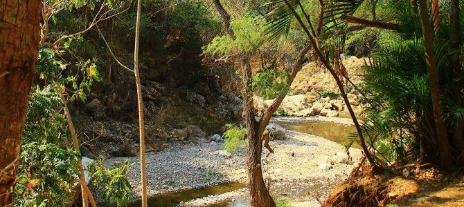 Colima: relax en la Ciudad de Las Palmeras